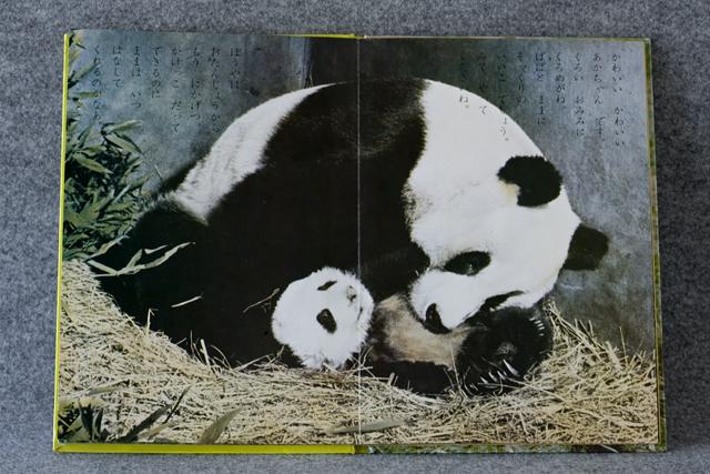 昭和レトロなパンダ5点セット-25