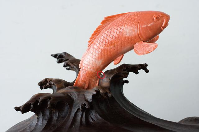 珊瑚の鯉の置物-05a
