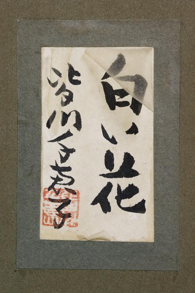 日本画家|皆川千恵子の「白い花」-03